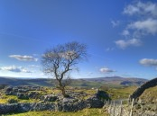 between-settle-and-grassington
