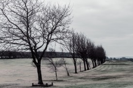 norland-golf-course-winter-scene