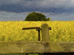 rape-field-impressionist-2