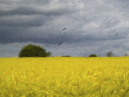 rape-field-impressionist