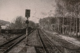signal-and-train